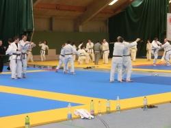 Austrian Jiu Jitsu Association